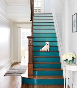 Stairs after? *remove small white dog*
